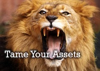 Tame Your Assets
